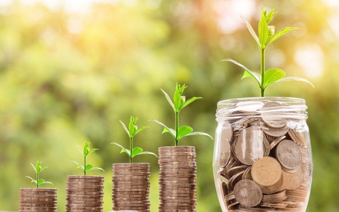 How do I invest my money?